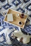 早餐在河床上 书、水罐和一杯咖啡在手工制造一个木的盘子的 在蓝色亚麻布的白色猫 免版税库存图片