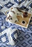 早餐在河床上 水罐和一杯咖啡在手工制造一个木的盘子的 在蓝色亚麻布的白色猫 库存图片