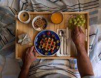 早餐在河床上 免版税库存图片