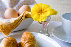 早餐复活节空白黄色 免版税库存图片