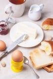 早餐用鸡蛋 库存照片