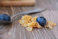 早餐谷物和蓝莓 库存图片