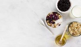 早餐:格兰诺拉麦片,酸奶,蜂蜜,在一白色backgrou的蓝莓 图库摄影
