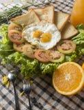 早餐-鸡蛋,三明治,蕃茄,沙拉,调味汁 免版税库存照片