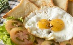早餐-鸡蛋,三明治,蕃茄,沙拉,调味汁 库存照片