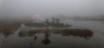 早黎明被淹没 免版税库存图片
