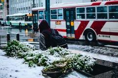 旭川,北海道在冬天 免版税库存图片