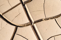 旱田在沙漠 库存照片