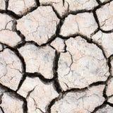 旱田,裂缝在土地 图库摄影