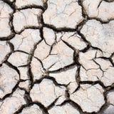 旱田,裂缝在土地 免版税图库摄影