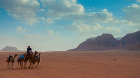 旱谷兰姆酒沙漠,约旦 库存图片