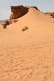 旱谷兰姆酒沙漠 库存图片