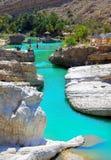 旱谷巴尼卡利德鲜绿色水池,阿曼 图库摄影