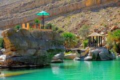 旱谷巴尼卡利德鲜绿色水池,阿曼 库存图片