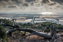旱谷Oren,以色列 免版税库存照片
