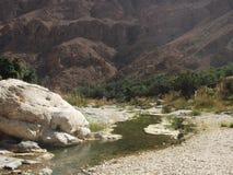 旱谷Tiwi绿洲,阿曼 免版税图库摄影