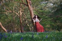 时兴的夫人在早期的春天倾斜反对一棵树在英国森林地,有在前景的会开蓝色钟形花的草的 免版税库存照片