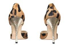 时兴的女性鞋子 免版税图库摄影