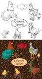 时兴的家庭鸡和公鸡 免版税库存图片
