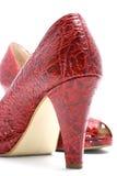 时兴的对红色穿上鞋子妇女 库存照片