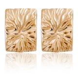 时尚妇女在金子的` s耳环 免版税库存照片