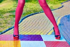 时尚妇女的性感的腿,脚跟 生动的多彩多姿的几何 库存图片