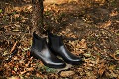 时尚广告穿上鞋子照片 免版税库存照片