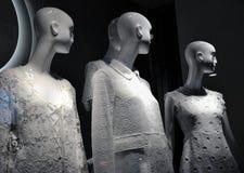 时尚时装模特 免版税库存图片