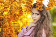 时尚时髦秀丽女孩秋天画象 深色的妇女 免版税图库摄影