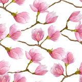 时尚木兰开花纹理 包裹,织品、纺织品、墙纸和包裹的水彩手拉的无缝的样式 库存照片