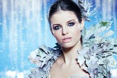 时尚美丽的冬天妇女 库存图片