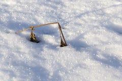 时数横向季节冬天 照片 免版税库存图片