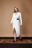 时装模特儿姿势前面编目夏天汇集设计师布料 库存图片