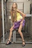 时装模特儿摆在性感 免版税图库摄影