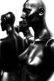 时装模特塑料 库存图片