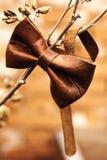 时装配件-布朗皮革蝶形领结 免版税库存图片