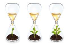 时钟硬币玻璃发芽向量 库存照片