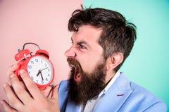时间安排技能 直到最后期限的多少时刻 时刻工作 人有胡子的积极的商人举行时钟 重点 库存图片