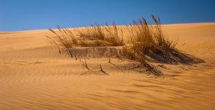 时间沙子  免版税库存照片