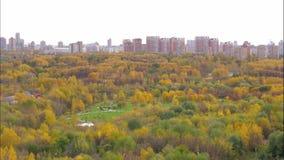 时间间隔秋天在与黄色叶子4K 3840x2160的树的城市公园 影视素材