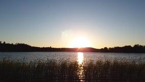 时间间隔 在森林湖视图的华美的日落 美好的夏天背景 股票视频