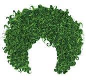 时髦卷曲绿色头发 现实3d 球状发型 免版税库存照片