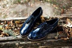 时髦和典雅的漆革妇女` s方鞋子和秋叶的顶视图在老木头的在森林或公园里 免版税库存照片