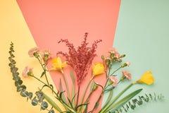 时髦时尚花束 背景概念框架沙子贝壳夏天 最小 免版税图库摄影