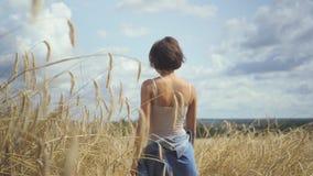 时髦的与接触黄色麦子耳朵的短发的妇女佩带的紧身衣裤走通过麦田 r 股票视频