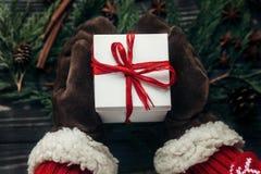 时髦的圣诞节季节性问候概念 手在手套美国兵 库存照片