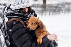 时髦的在多雪的co的行家妇女拥抱的和微笑的逗人喜爱的小狗 图库摄影