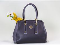 时髦的女人袋子 免版税库存照片
