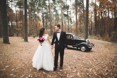 时髦的婚礼夫妇,新娘,亲吻和拥抱在减速火箭的汽车附近的新郎在秋天 库存照片