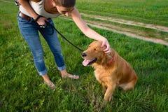 时髦的少妇和她的爱犬金毛猎犬 免版税库存图片